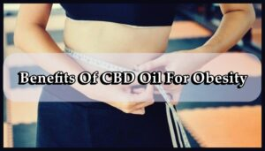 CBD Oil for Obesity