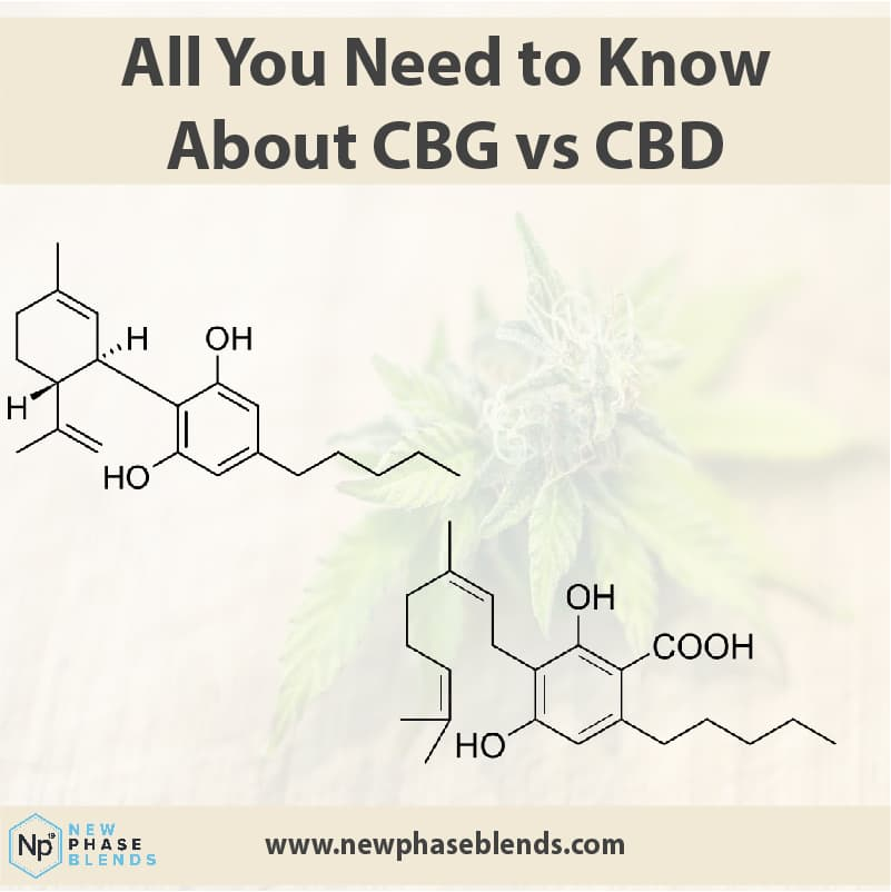 CBD vs CBG article thumbnail