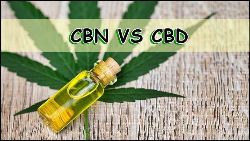 CBN Vs CBD
