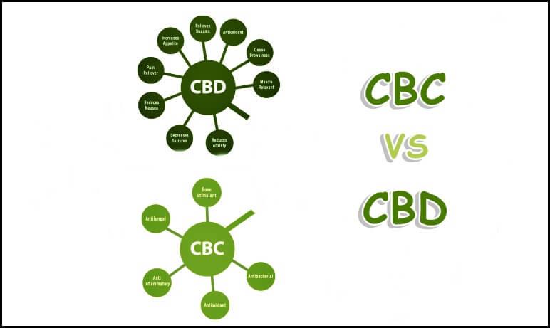 CBC VS CBD