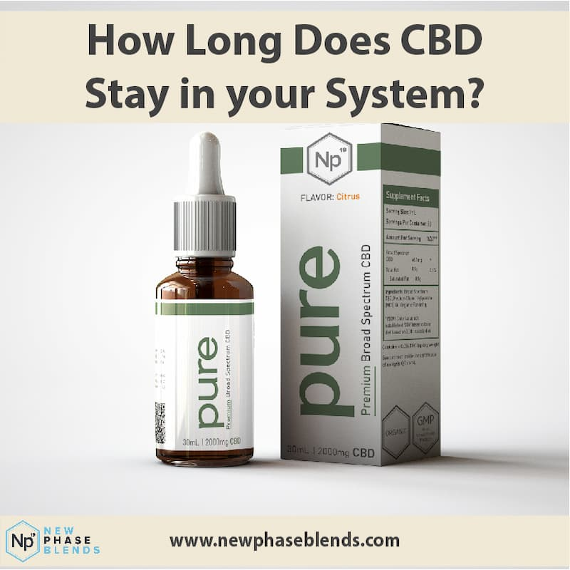 How long does CBD stay in your system thumbnail