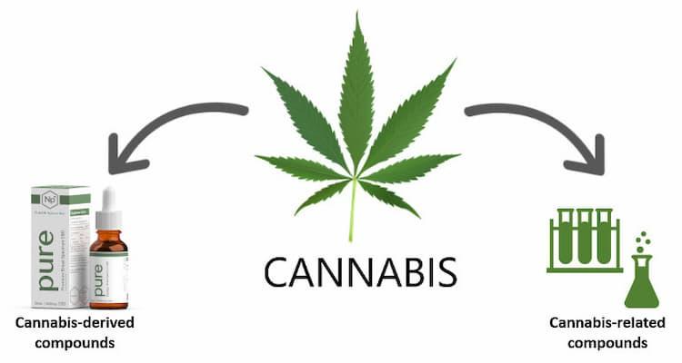 Legal CBD derivatives in New Hampshire