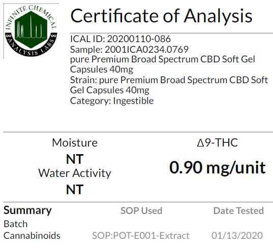 Cbd Company Analysis Results