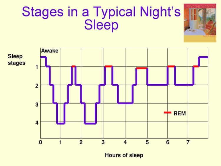sleep stages chart from best melatonin gummies