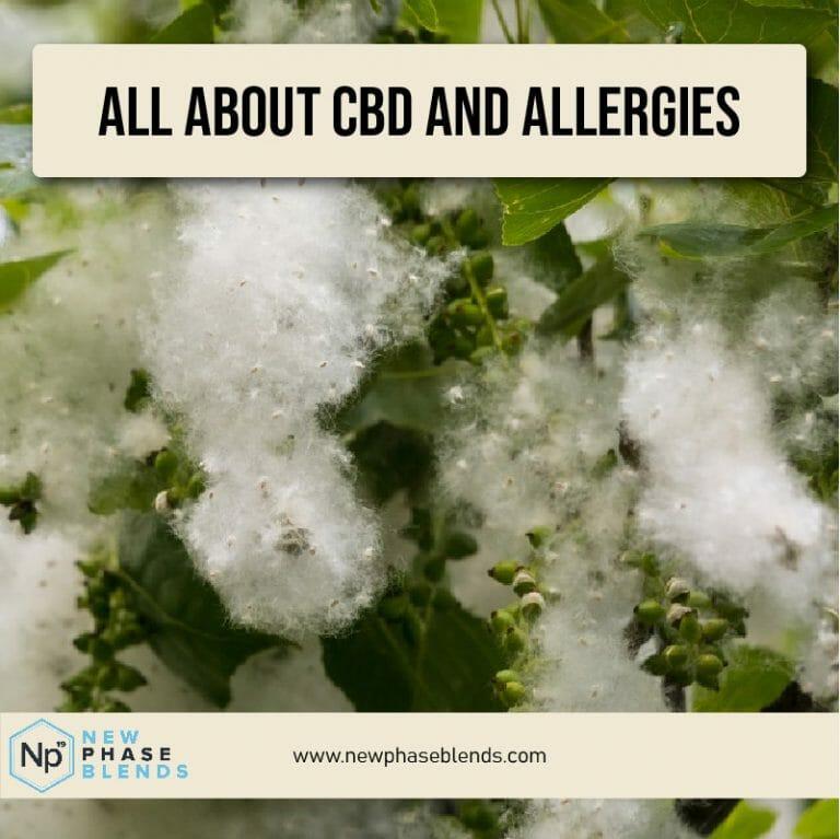 Cbd Allergies Thumbnail